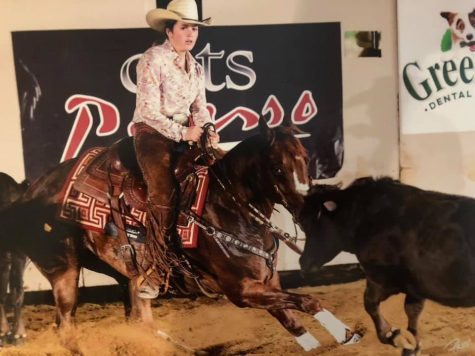 "Lauren Langbaum on her horse ""Little Soldado,"" also known as Maddox. She is pictured competing in the herd work in a youth spectacular at the 2019 NRCHA Derby, and she placed 3rd overall."