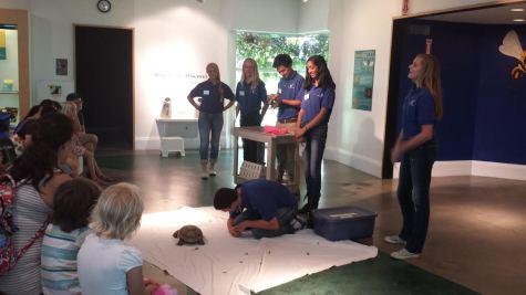 Lindsay Wildlife Museum volunteers