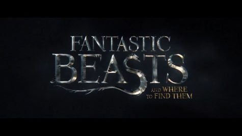This magical Harry Potter prequel follows a British wizard in 1920's New York City as he attempts to find all of his missing fantastic beasts.
