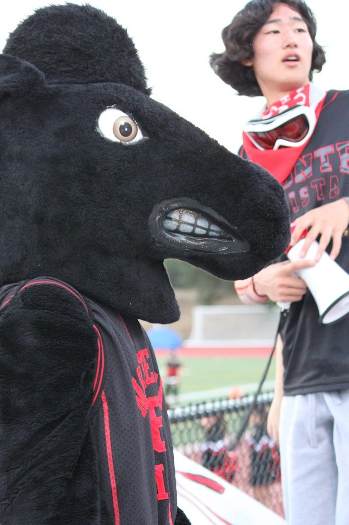 Kim and the MV mascot, Musty the Mustang, hyping up a crowd during a football game.