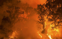 Wildfires are continuing to spread across California and have burned over four million acres of land so far in 2020. The growing intensity of these blazes has provoked fear over the increasing influence of climate change in these natural disasters.